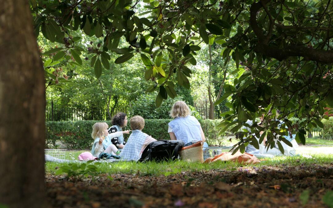 Varmt välkommen till Gathenhielmska Trädgården